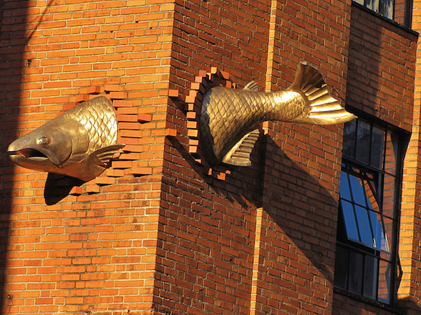 gold fish sculpture bursting through building